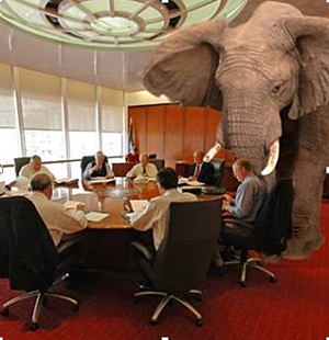 physician burnout elephant in the room physician leadership opt