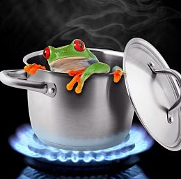 frog-in-boiling-water-just-say-no-physician-burnout_opt260w